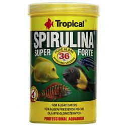 tropical super spirulina...