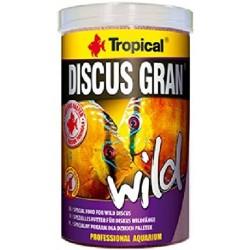 tropical discus gran wild...
